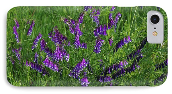 Alpine Vetch IPhone Case by Robyn Stacey