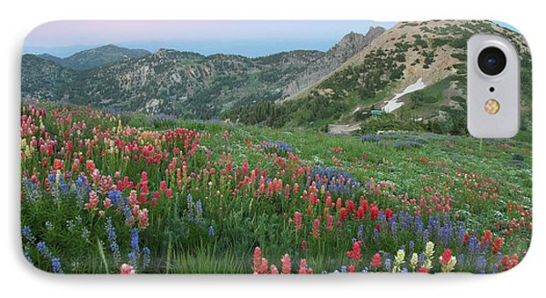 Alpine Wildflowers And View At Sunset Phone Case by Brett Pelletier