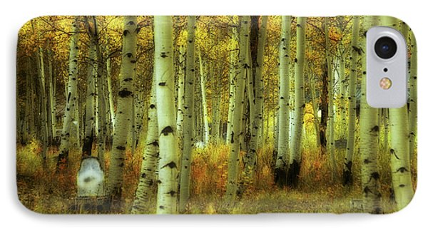 IPhone Case featuring the photograph Alvarado Autumn 1 by Marie Leslie