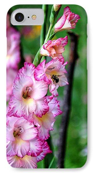 Amaryllis IPhone Case by Ronda Ryan
