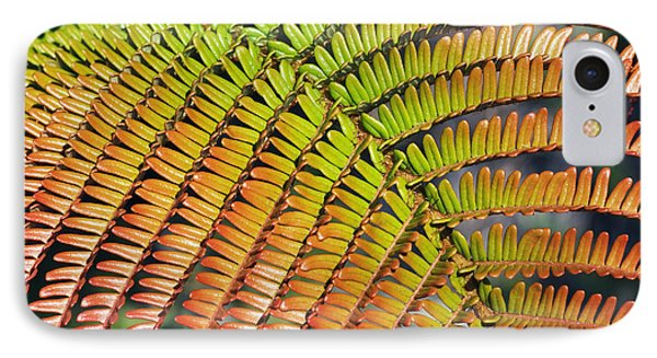 Amaumau Fern Frond Phone Case by Greg Vaughn - Printscapes