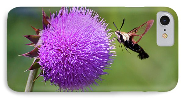 IPhone Case featuring the photograph Amazing Insects - Hummingbird Moth by Kerri Farley