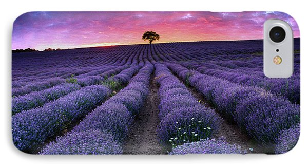 Amazing Lavender Field With A Tree Phone Case by Evgeni Dinev