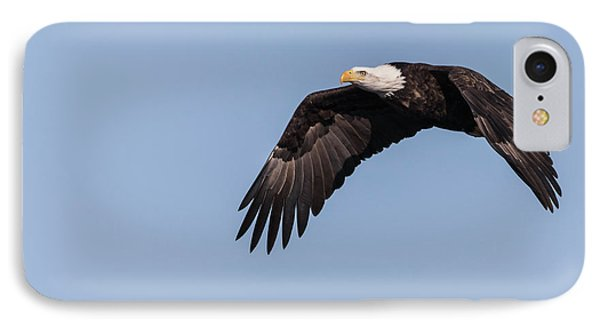 IPhone Case featuring the photograph American Bald Eagle 2017-14 by Thomas Young