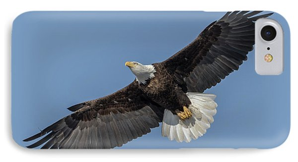 IPhone Case featuring the photograph American Bald Eagle 2017-18 by Thomas Young
