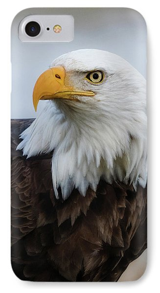 IPhone Case featuring the photograph American Bald Eagle Portrait by Angie Vogel