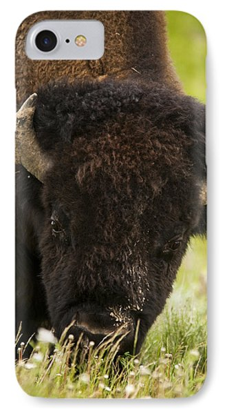 American Bison Phone Case by Chad Davis