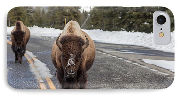 IPhone Case featuring the photograph American Bison In Yellowstone National Park by Carol M Highsmith