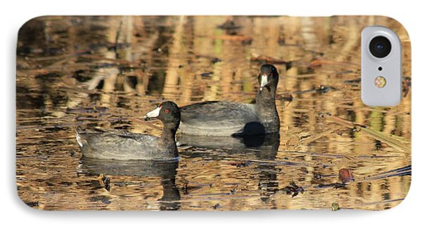 IPhone Case featuring the photograph American Coots by Jerry Battle