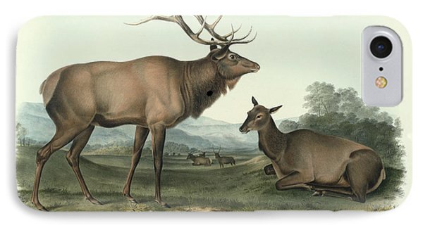 American Elk IPhone Case by John James Audubon