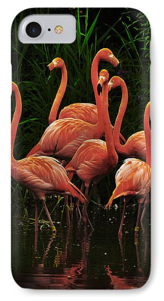 IPhone Case featuring the photograph American Flamingo by Michael Cummings