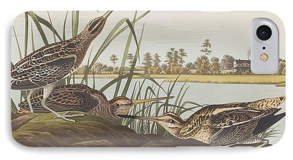 American Snipe  IPhone Case by John James Audubon