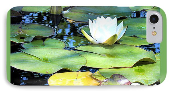 American Water Lilies Four IPhone Case by J Jaiam