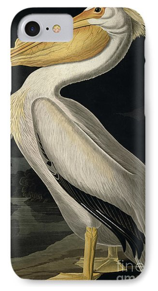 American White Pelican Phone Case by John James Audubon