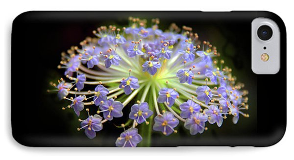 Amethyst Allium IPhone Case by Jessica Jenney