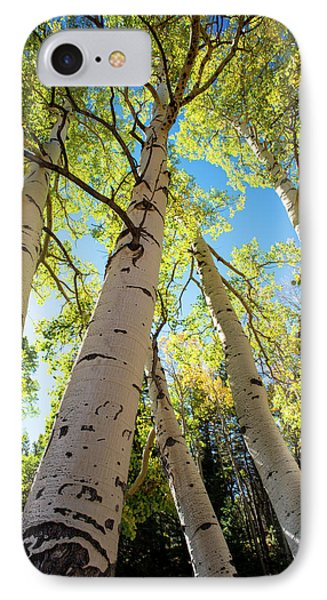 Aspen Dance IPhone Case by Dana Sohr
