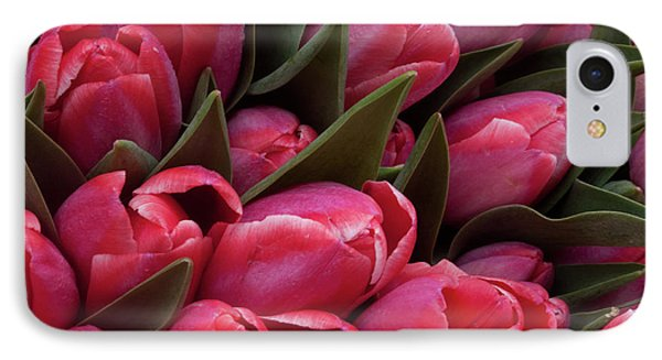 Amsterdam Red Tulips IPhone Case by Jill Smith