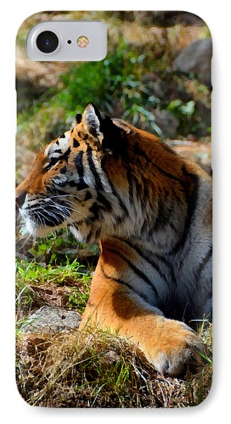 IPhone Case featuring the mixed media Amur Tiger 9 by Angelina Vick