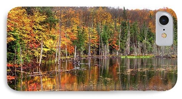 An Adirondack Pond IPhone Case