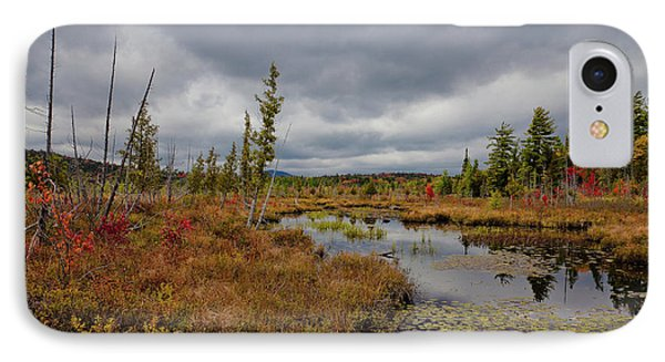 IPhone Case featuring the photograph An Autumn Afternoon On Raquette Lake by David Patterson