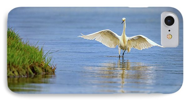 An Egret Spreads Its Wings IPhone Case by Rick Berk