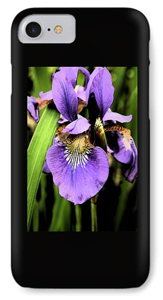 IPhone Case featuring the photograph An Iris Portrait - Botanical by Margie Avellino