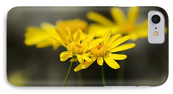 An Organic Connection IPhone Case by Jorgo Photography - Wall Art Gallery
