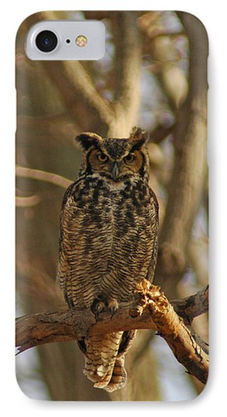 An Owl Phone Case by Raymond Salani III
