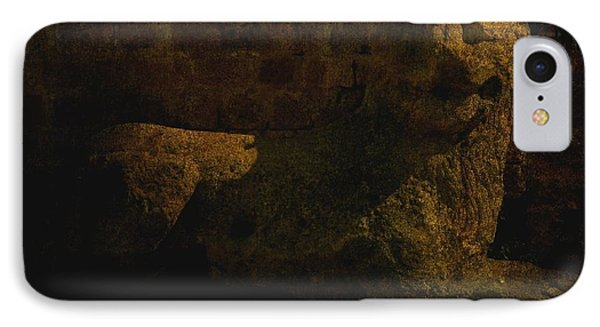 Ancient Lion In Cyprus IPhone Case by Jim Vance