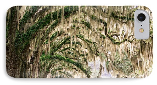 Ancient Southern Oaks IPhone Case