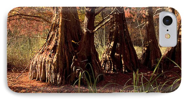 IPhone Case featuring the photograph Ancient Tree At Lake Murray by Tamyra Ayles