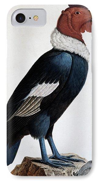 Andean Condor IPhone 7 Case by English School