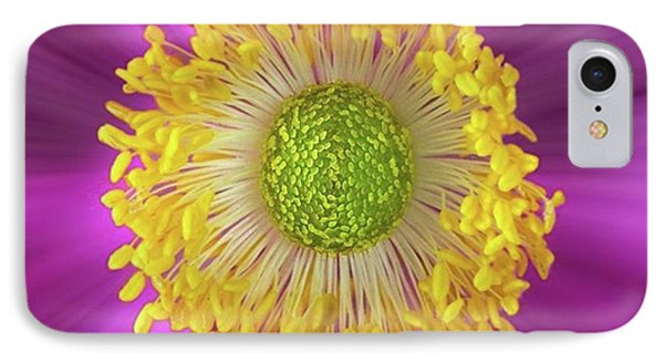 Anemone Hupehensis 'hadspen Phone Case by John Edwards