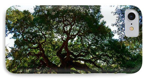 Angel Oak Tree 2004 Phone Case by Louis Dallara