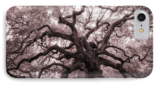 Angel Oak Tree IPhone Case by Dustin K Ryan