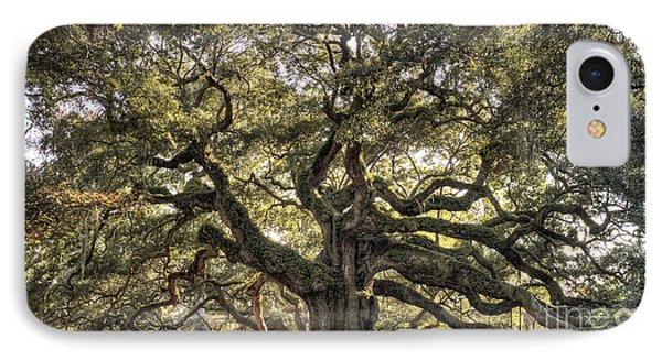 Angel Oak Tree Live Oak  IPhone Case by Dustin K Ryan