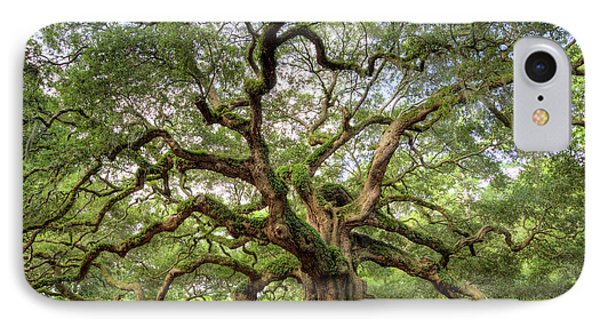 Angel Oak Tree Of Life Phone Case by Dustin K Ryan