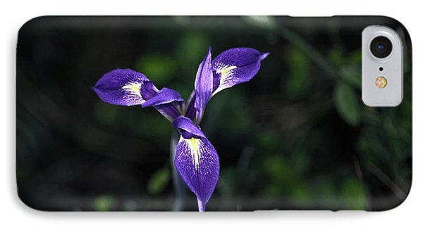IPhone Case featuring the photograph Angelpod Blue Flag by Sally Weigand