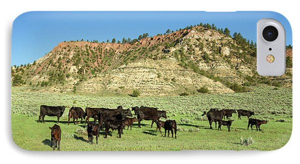 Angus At Cherry Butte IPhone Case by Todd Klassy