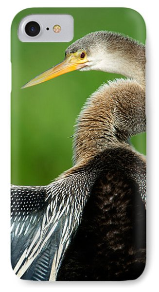 Anhinga Anhinga Anhinga, Pantanal IPhone 7 Case by Panoramic Images