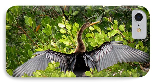 Anhinga With Silver Wings IPhone Case by Rosalie Scanlon