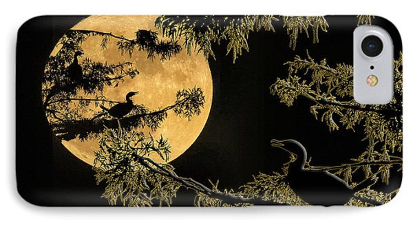 IPhone Case featuring the photograph Anhingas In Full Moon by Bonnie Barry