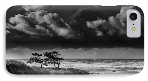 IPhone Case featuring the photograph Another Day At Kalaloch Beach by Dan Mihai