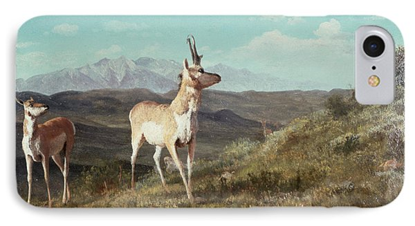 Antelope Phone Case by Albert Bierstadt