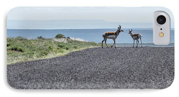 Antelope Crossing IPhone Case by Jean Noren