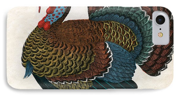 Antique Print Of A Turkey, 1859  IPhone Case by American School