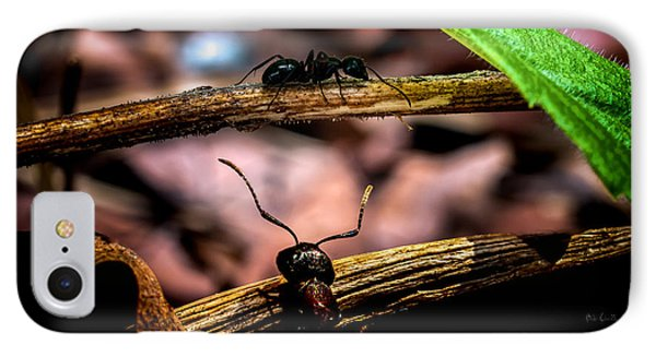 Ants Adventure IPhone 7 Case