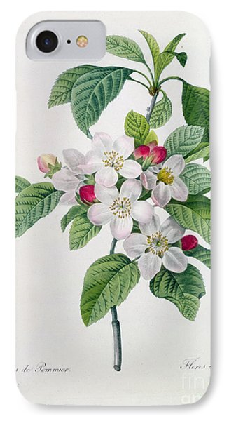 Apple Blossom Phone Case by Pierre Joseph Redoute