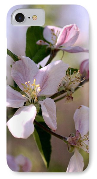 IPhone Case featuring the photograph Apple Blossom Time by Diane Merkle
