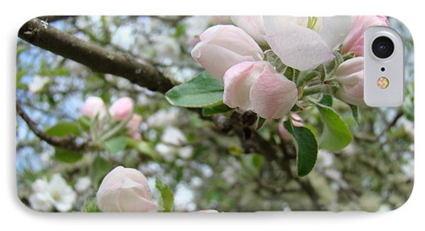 Apple Tree Blossoms Art Prints Apple Blossom Buds Baslee Troutman Phone Case by Baslee Troutman